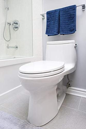 Danco, 10062 Design Toilet Seat Bumpers, 1 Pack