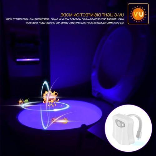 8 LED Toilet Night Lights Sensor Glow Bathroom Seat