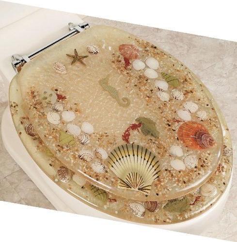 Elongated Beige Jewel Shell Seashell