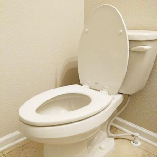 BEMIS ELONGATED TOILET REPLACEMENT Wood Oval