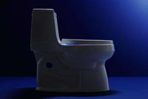 KOHLER Reveal Quiet-Close with Bumpers Round-front Toilet Seat,