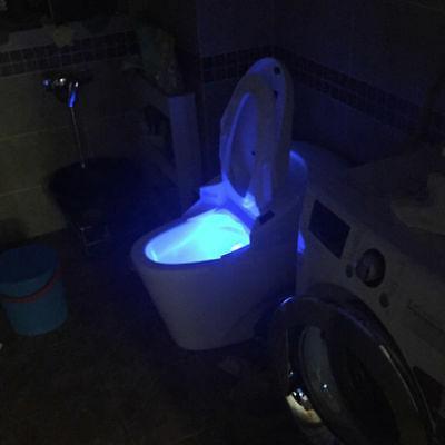 LED Toilet Light Bowl Colors Body
