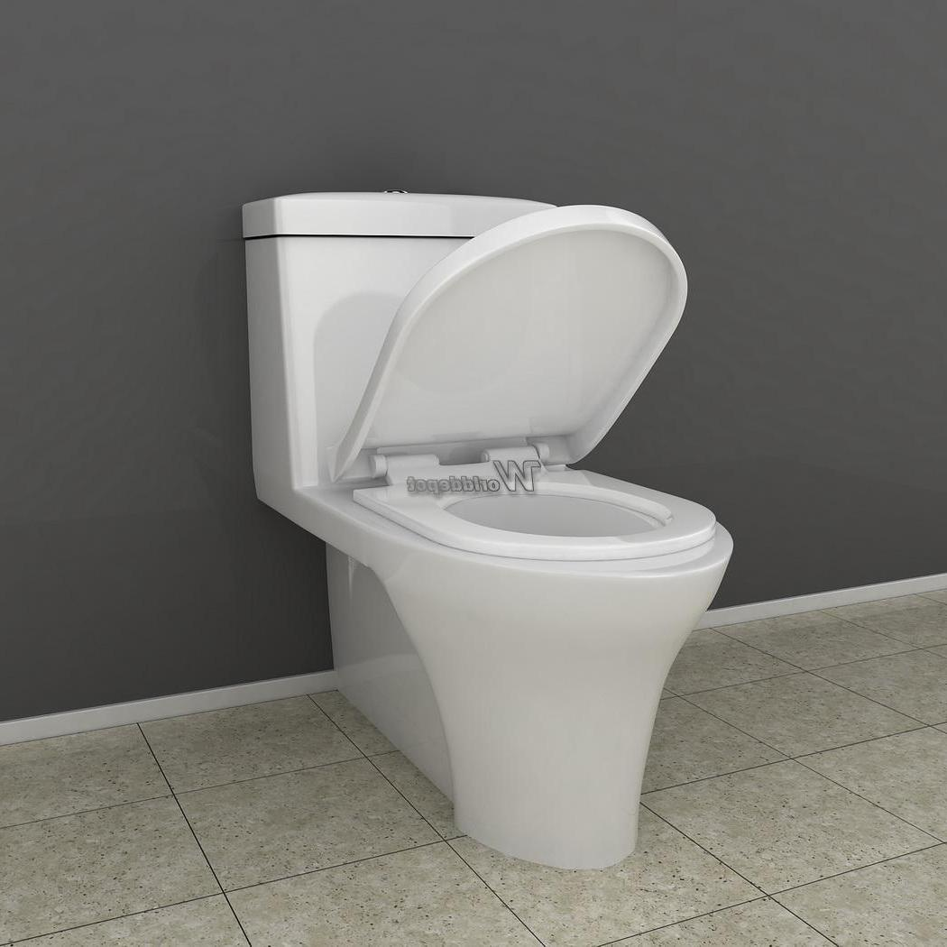 Slow Closed Front Toilet White