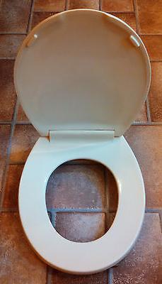 Stupendous Square Front Toilet Seat Toilet Seat Org Unemploymentrelief Wooden Chair Designs For Living Room Unemploymentrelieforg